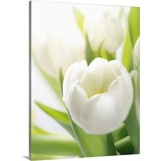 """White tulip"" Canvas Wall Art"