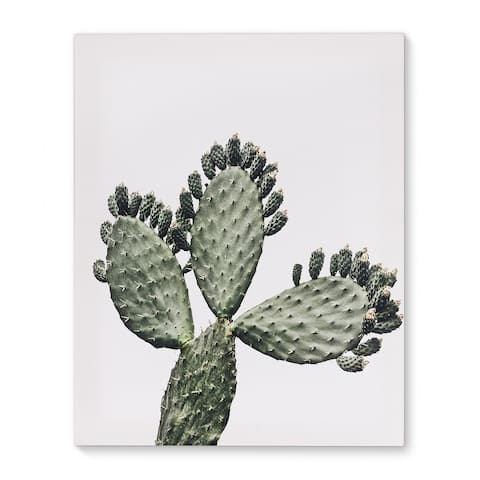 CACTUS ELLIS Canvas Art By Terri Ellis