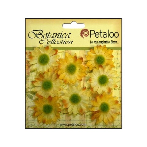 Petaloo Botanica Gerber Daisy Mini Yellow