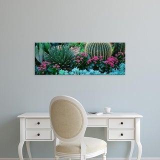 Easy Art Prints Panoramic Images's 'Plants Flowers' Premium Canvas Art