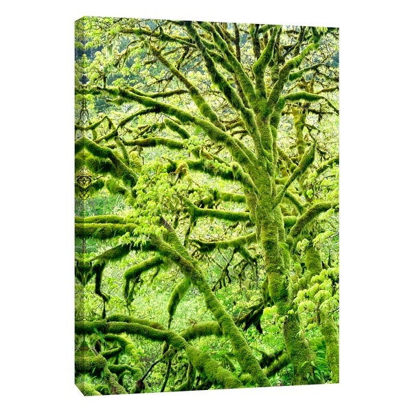 """PTM Images 9-108897 PTM Canvas Collection 10"""" x 8"""" - """"Spring Green"""" Giclee Forests Art Print on Canvas"""