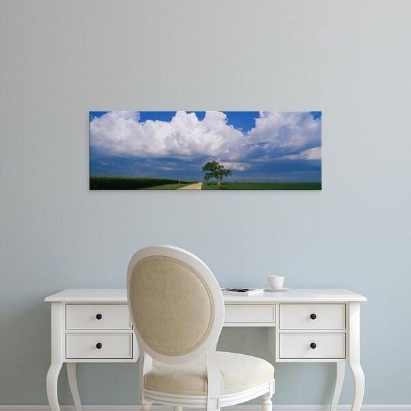 Easy Art Prints Panoramic Images's 'Oak tree in a landscape, Stelle, Illinois, USA' Premium Canvas Art