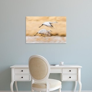 Easy Art Prints Larry Ditto's 'Sandhill Crane' Premium Canvas Art