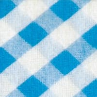 Bibby Mat Color: Blue / Orange Gingham