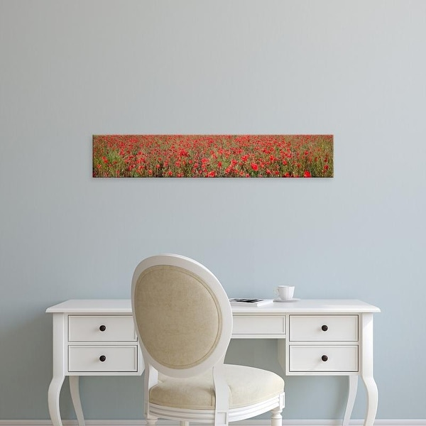 Easy Art Prints Panoramic Images's 'Field of poppies in bloom, Saint