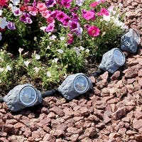 Sunnydaze Set of 4 Solar Powered Outdoor Rock Garden Accent with White Light