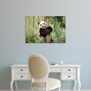 Easy Art Prints Keren Su's 'Panda Cub Playing On Tree' Premium Canvas Art