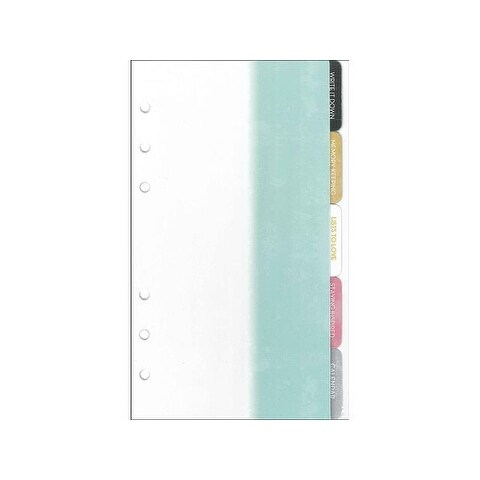 Webster's Pgs CC Divider Teal/White