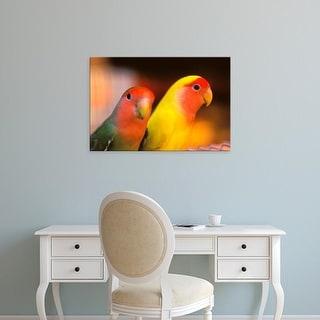 Easy Art Prints Stuart Westmorland's 'Love Birds' Premium Canvas Art
