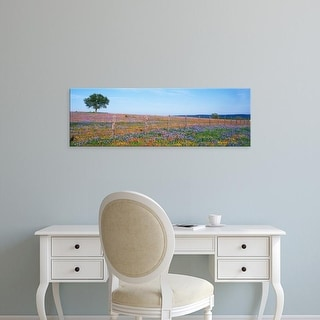 Easy Art Prints Panoramic Images's 'Flowers in a field, Texas Hill Country, Texas, USA' Premium Canvas Art