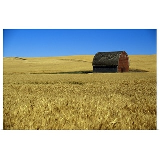 """Red barn in wheat field, Palouse region, Washington"" Poster Print"