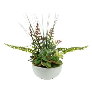 """11.5"""" Potted Artificial Mixed Red and Green Succulent and Fern Plant - N/A"""
