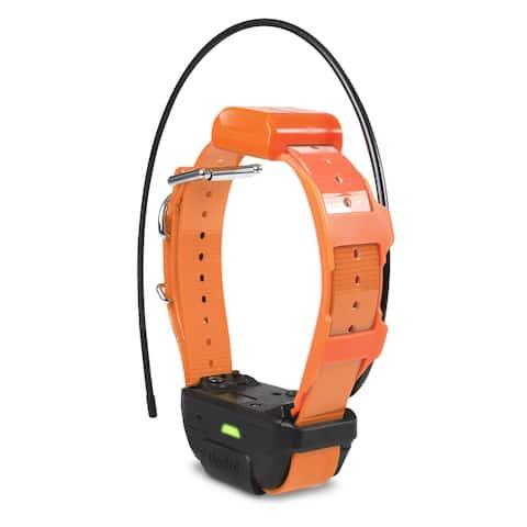 Dogtra pathfinder-trx-rx-org orange dogtra pathfinder trx tracking only collar orange