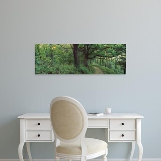 Easy Art Prints Panoramic Images's 'Trees in a forest, Wisconsin, USA' Premium Canvas Art