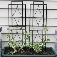 Sunnydaze 30-Inch Durable Metal Wire Contemporary Garden Trellis - Set of 2