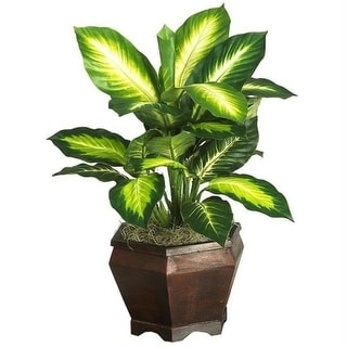 Nearly Natural 6592-0507 Golden Dieffenbachia with Wood Vase Silk Plnat