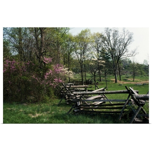 """""""Flowering trees in bloom along fence line, spring, Great Smoky Mountains National Park, Tennessee"""" Poster Print"""