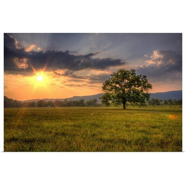 """""""Sunset behind lone tree in field, Great Smoky Mountains National Park."""" Poster Print"""