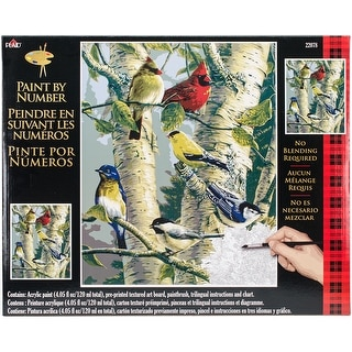 "Paint By Number Kit 16""X20""-Song Birds"