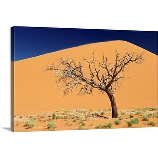 """""""Dead tree, Namibia, Africa"""" Canvas Wall Art"""