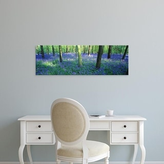 Easy Art Prints Panoramic Images's 'Bluebells in a forest, Charfield, Gloucestershire, England' Premium Canvas Art