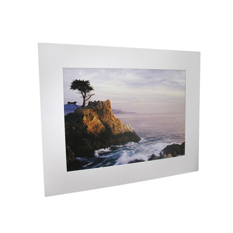National Geographic Lone Cypress Tree of Pebble Beach Matted Print