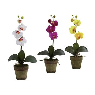 Nearly Natural Potted Phalaenopsis - Set of 3 - orted