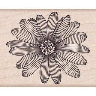 "Hero Arts Mounted Rubber Stamp 2""X2.5""-Etched Daisy"