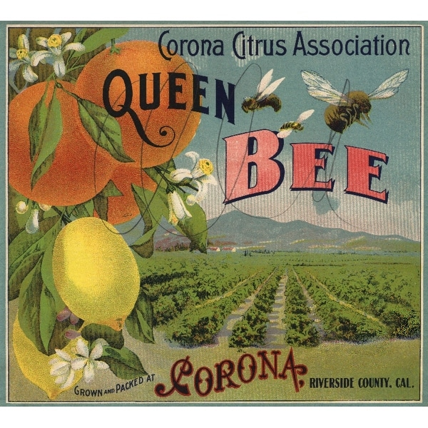 Corona, CA - Queen Bee Brand - Vintage Label (100% Cotton Towel Absorbent)