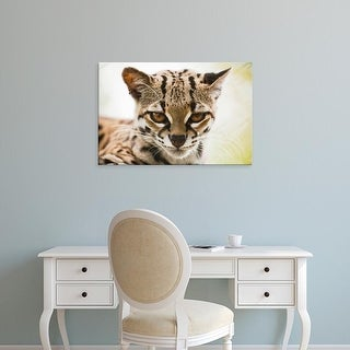 Easy Art Prints Paul Souders's 'Ocelot' Premium Canvas Art