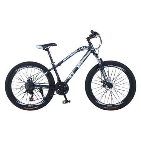 "AOOLIVE Adult Black Mountain Bike 6""STEEL MTB,Stainless Steel"