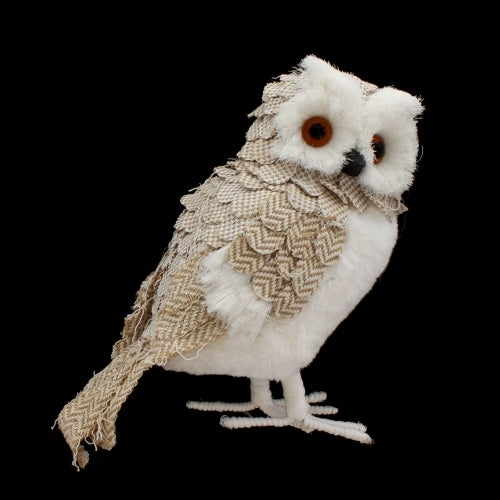White and Tan Owl