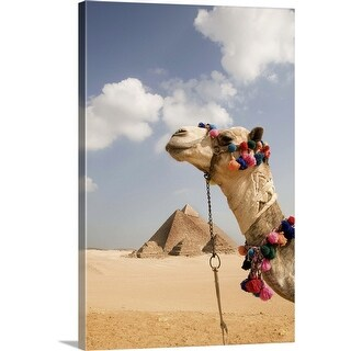 """Pyramids at Giza with tourist camel"" Canvas Wall Art"