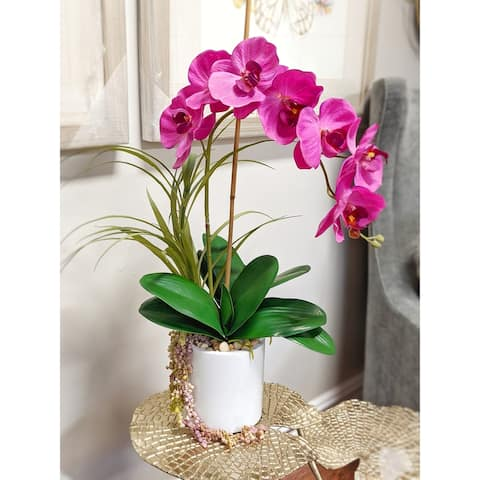 """Magenta Phalaenopsis Orchid in a White Pot w Hanging Succulent Vine and Grass 19""""L x 28""""H - 15 x 19 x 28"""