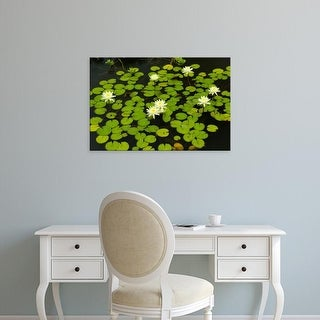 Easy Art Prints Corey Hilz's 'White Hardy Water Lilies' Premium Canvas Art