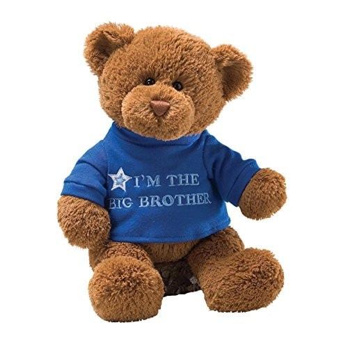 Gund T-shirt Message Teddy Bear Stuffed Animal