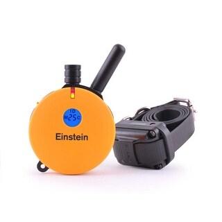 E-Collar Technologies Einstein ET-400TS 1 Dog Remote Trainer