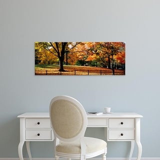 Easy Art Prints Panoramic Image 'Trees in a forest, Central Park, Manhattan, New York City, New York, USA' Canvas Art