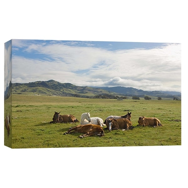 """PTM Images 9-101975 PTM Canvas Collection 8"""" x 10"""" - """"Resting Horses, San Simeon"""" Giclee Horses Art Print on Canvas"""