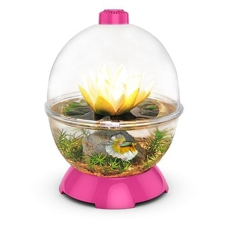 "BioBubble WonderBubble Pink 11.5"" x 11.5"" x 15"""