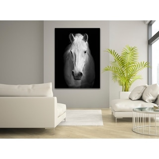 Link to White Horse Face Photography Canvas Art Similar Items in Art Prints