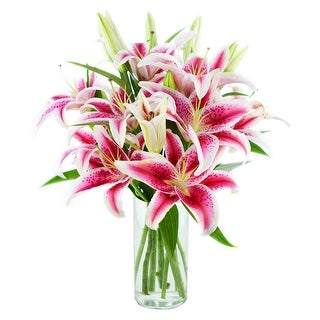 KaBloom - Lovely Lily Collection - 8 Stargazer Lilies with Vase