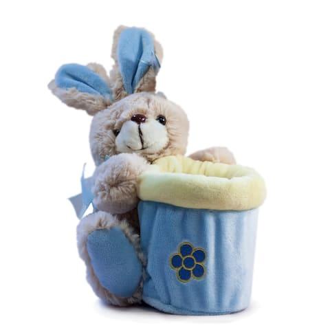 Beverly Hills Teddy Bear Company Springtime Bunny Basket in Blue