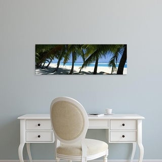Easy Art Prints Panoramic Images's 'Palm trees on the beach, Aitutaki, Cook Islands' Premium Canvas Art