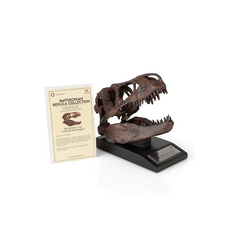 The Nation's T-Rex Skull Statue 6-Inch Smithsonian Fossil Replica 1:10 Scale - Brown