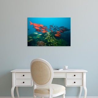Easy Art Prints Paul Souders's 'Manta Reef' Premium Canvas Art