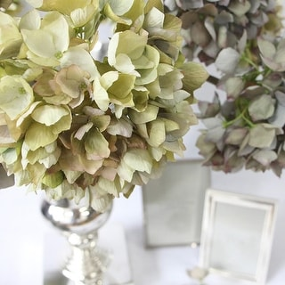 "G Home Collection Luxury Silk Single Hydrangea Stem in Green 19"" Tall"
