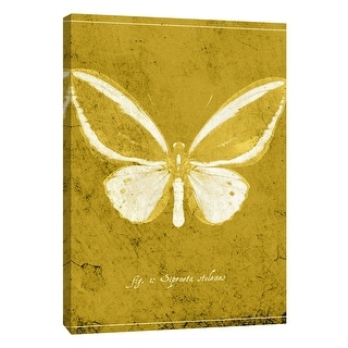 """PTM Images 9-108436  PTM Canvas Collection 10"""" x 8"""" - """"Butterfly K"""" Giclee Butterflies Art Print on Canvas"""
