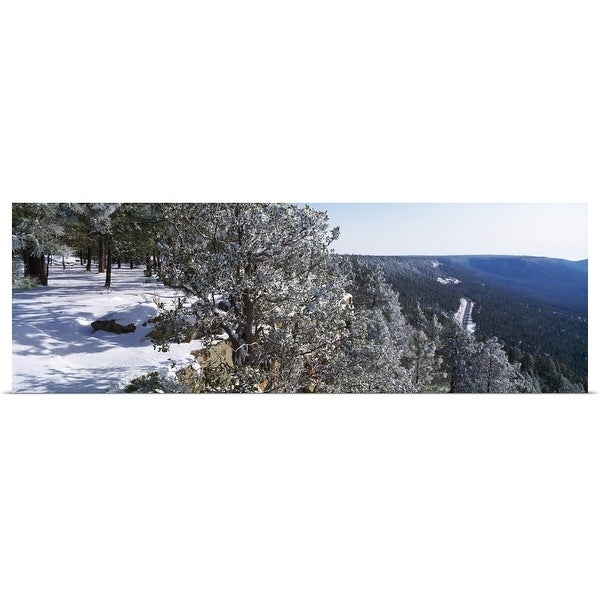 """""""Trees covered with snow, Mogollon Rim, Tonto National Forest, Zane Grey Country, Arizona"""" Poster Print"""