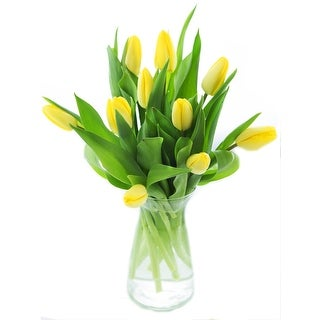 KaBloom - Splendid Tulip Collection - 10 Yellow Tulips with Vase